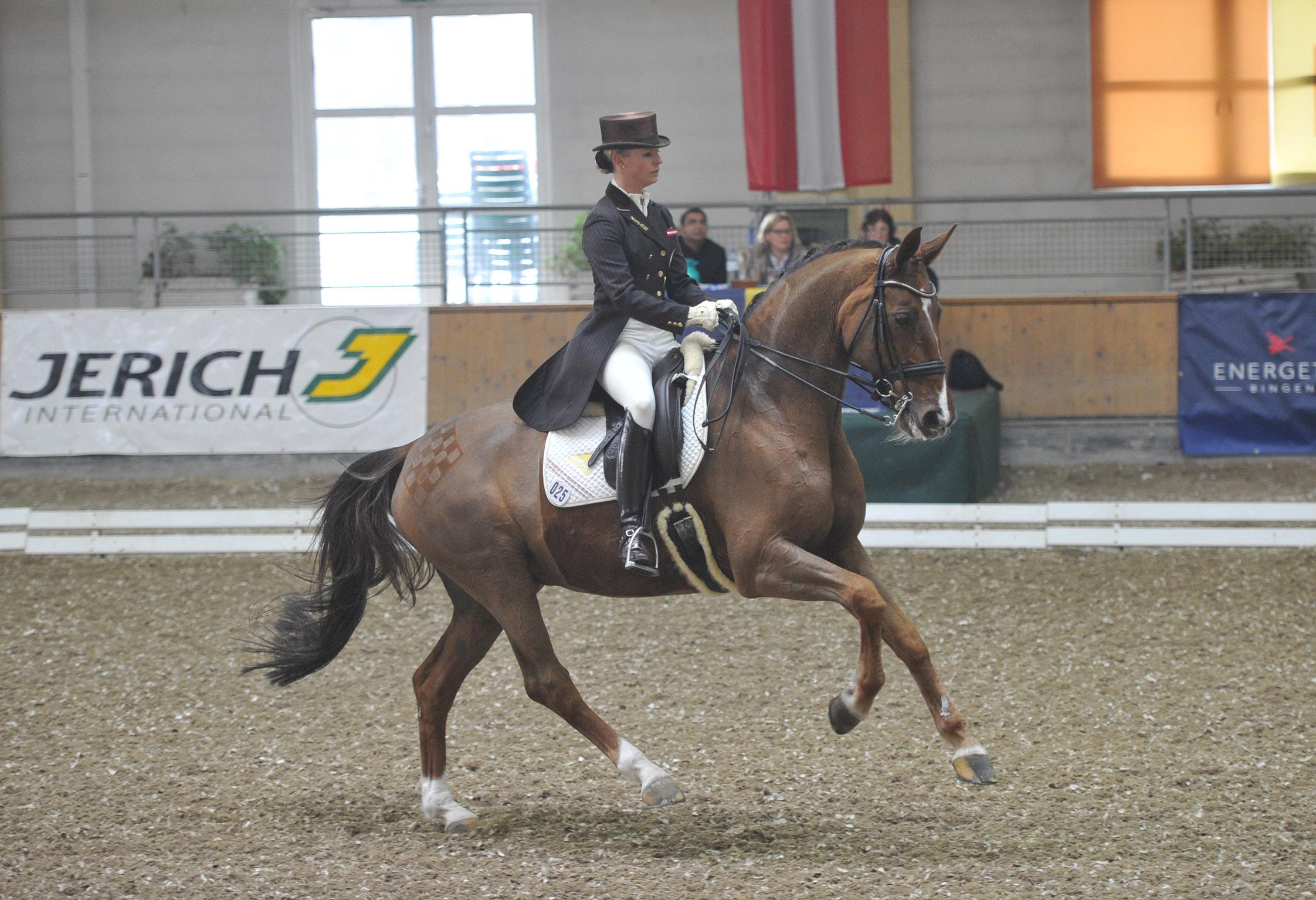 Pferdezentrum Stadl-Paura - 7,878 Photos - Performance