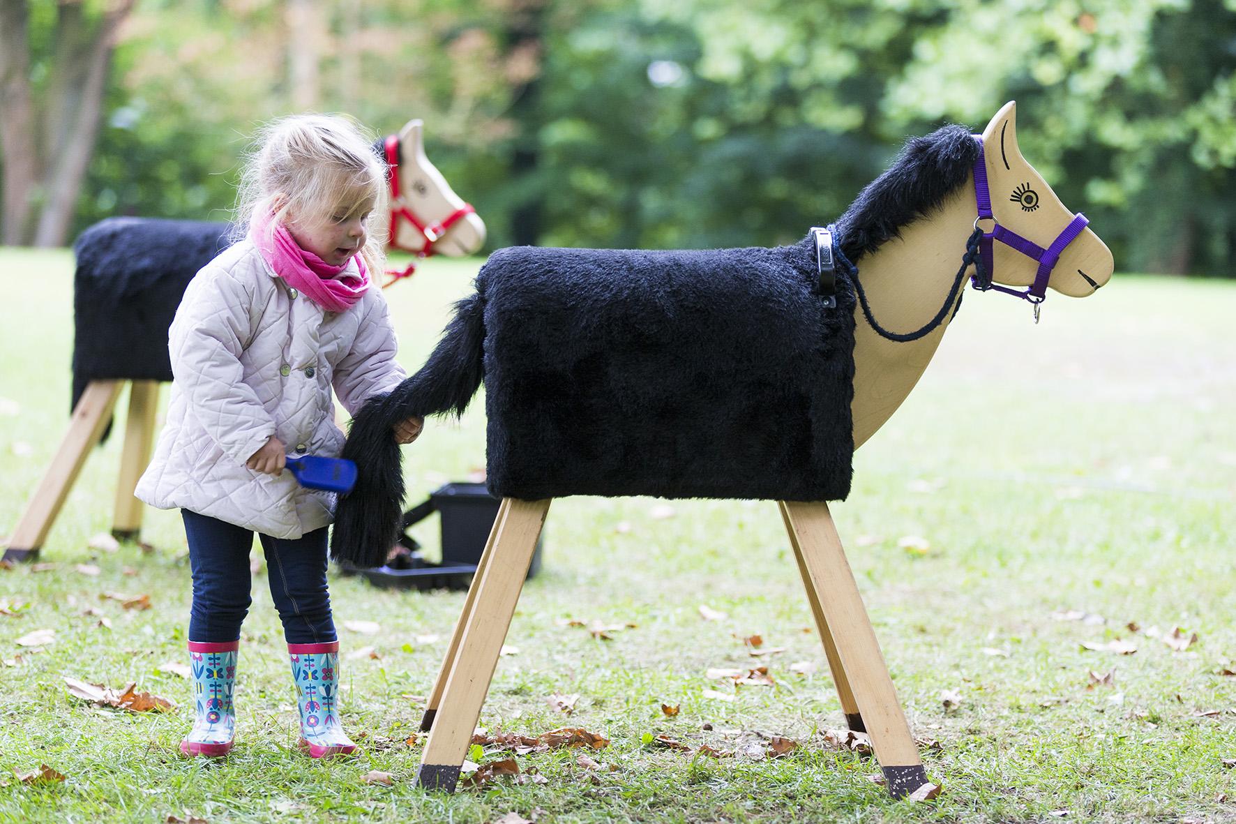 """kooperation mit Österreich ist perfekt """"pferde für unsere kinder"""