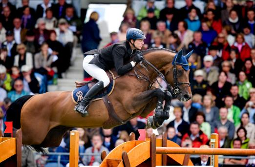 Foto: Chacco Blue, erfolgreiches Sportpferd und Leistungsvererber. Vater von vier Embryonen der Kollektion. - Fotograf: Arnd Bronkhorst Photography
