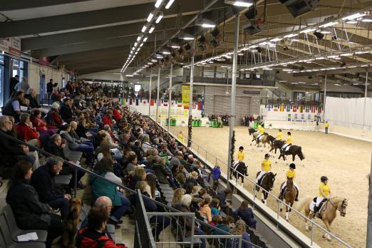 Foto: Die große Reitpony-Quadrille bei der Hengstschau des Ponyverbandes Hannover in Verden - Fotograf: Ponyverband Hannover/ Pantel