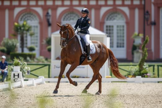 Foto: Johanna Sieverding aus Cappeln mit ihrer Stute Lady Danza - Fotograf: www.sportfotos-lafrentz.de