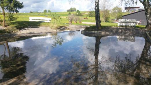 Foto: Altensteiger Wasserkomplex - Fotograf: Pensionsstall und Reitschule Rau