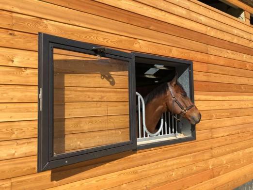 Foto: Ein Blick aus dem Fenster - Fotograf: Röwer & Rüb